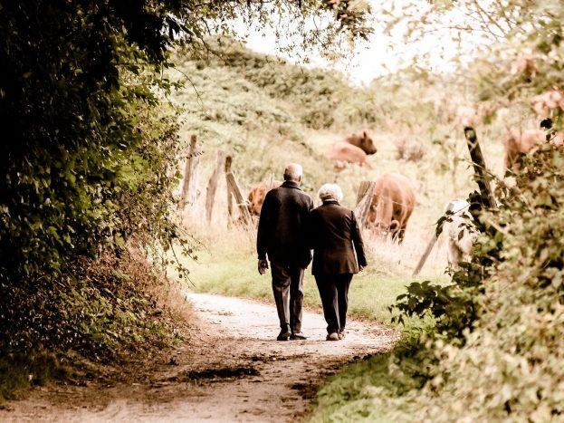 Pensionssplitting